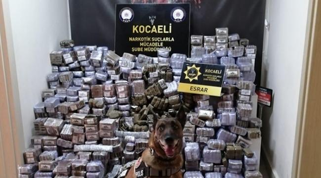 Kocaeli'de 330 kilogram esrar ele geçirildi!