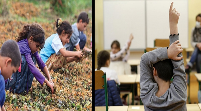 Eğitim eşitsizliği zirvede: Doğu kentlerinde öğrenciler okuldan koptu