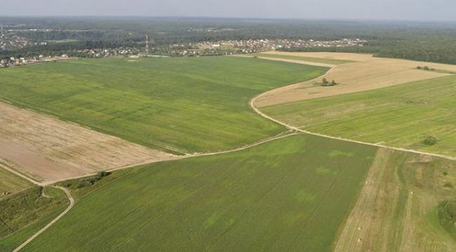 Kandıra Döngelli'de tarım arazisi icradan satılık!